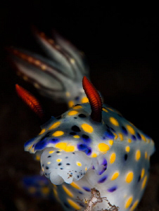 nudi in reverse lightning by Paolo Isgro